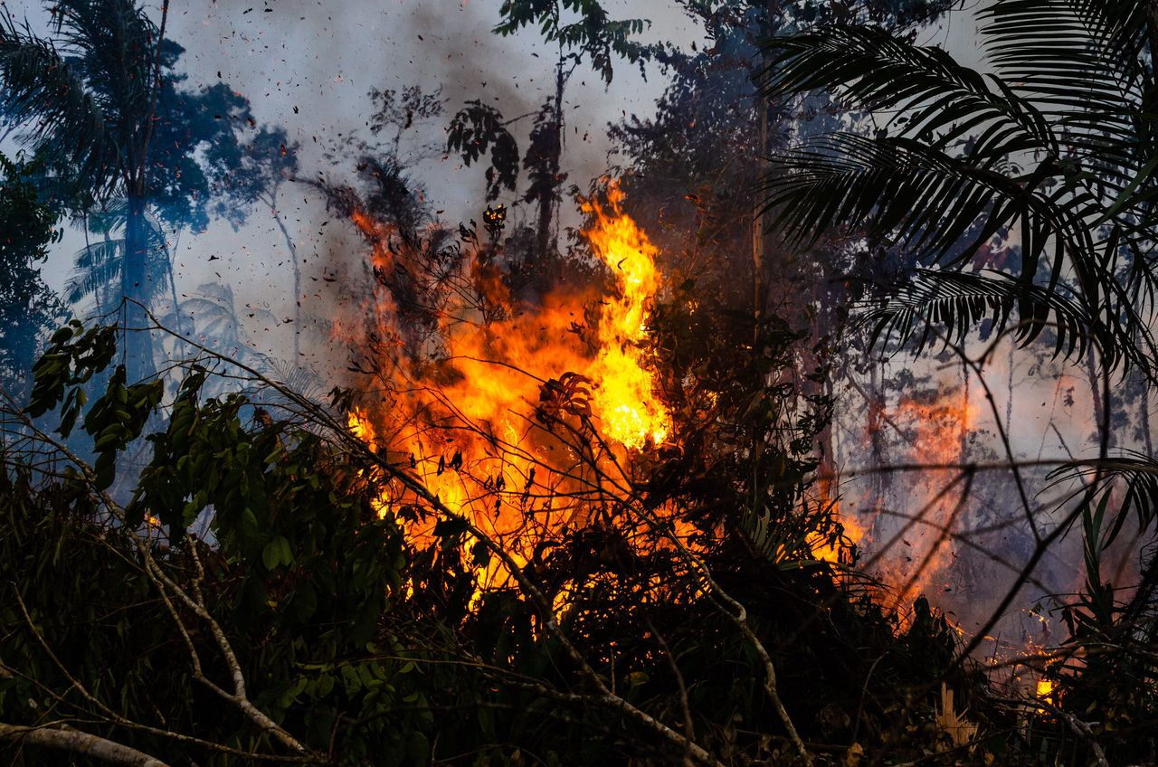 A fire in the Amazon rainforest in rural Novo Progresso, Para, Brazil, in August 2019. August saw the...