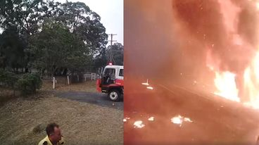 Terrifying Video Shows Bushfire Roar Through Forest In Less Than A
